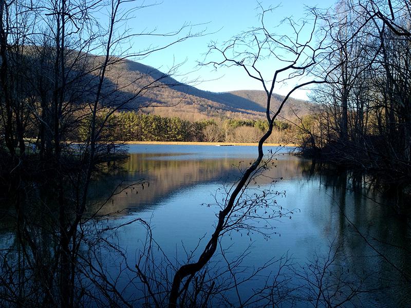LakeAWeb