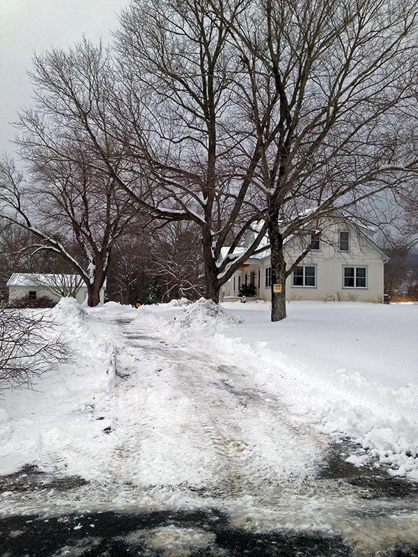SnowStorm2Web